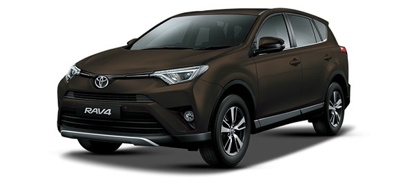 Toyota Rav4 DARK BROWN METALLIC 2018