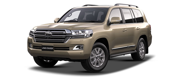 Toyota Land Cruiser Station Wagon BEIGE METALLIC 2019