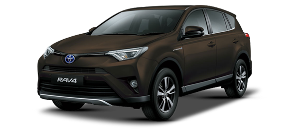 Toyota RAV4 Híbrido Eléctrico DARK BROWN METALLIC 2018