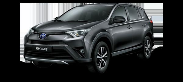 Toyota RAV4 Híbrido Eléctrico GRAY METALLIC/GRAPHITE 2019