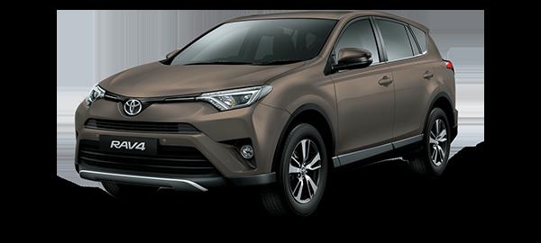 Toyota Rav4 BRONZE MICA METALLIC 2018