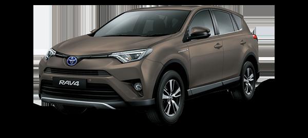 Toyota RAV4 Híbrido Eléctrico BRONZE MICA METALLIC 2019